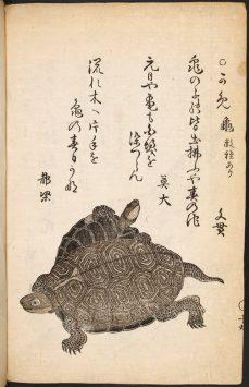 大英図書館所蔵の日本画