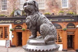 Greyfriars Bobby&Greyfriars Church