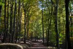 Lainzer Tiergartens, Hermesvilla
