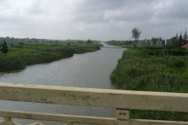 Chongming Island
