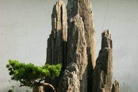 Garden Zuibaichi