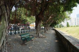 Jardim de Camões