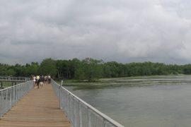 ウビン島にある長い橋