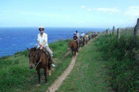 haw-horseback-riding