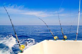 sai-fishing