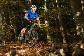 sai-mountain-bike