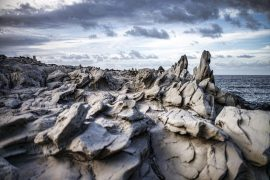 Dragon's Teeth