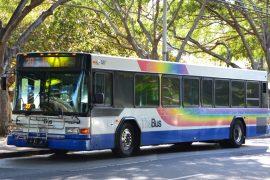 oahu-the-bus