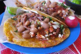 フリホーレス・デ・オヤはインゲン豆をタマネギと油で一緒に煮込んだ料理