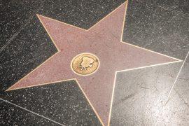 ハリウッド ウォーク オブ フェイムの星形プレート