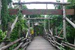 バリサファリ マリンパークのゾウの村