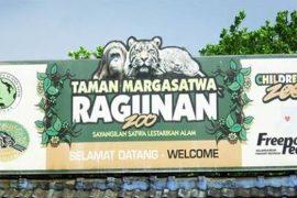 ラグナン動物園の入り口