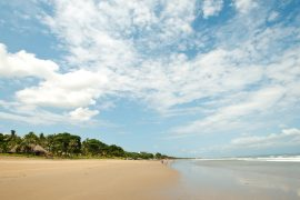 自然あふれるスミニャックビーチ