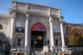 アメリカ自然史博物館の外観