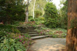 緑豊かなエドワード ガーデン内